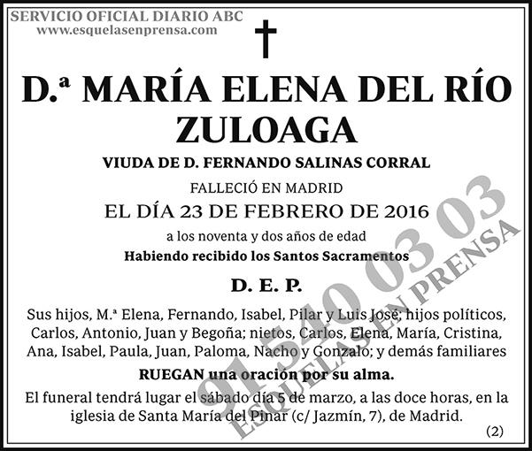 María Elena del Río Zuloaga